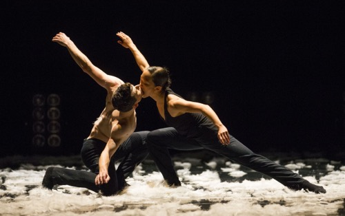 Hubbard Street Dancers